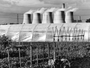 Crop Rotation by Colin Gibson