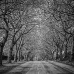 Old Grantham Road, Whatton by Malcolm Sales